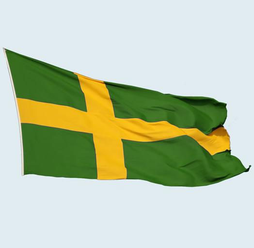 Bandera de SOLCOM